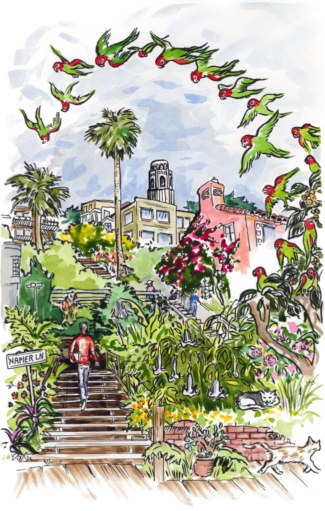 Illustration of Grace Marchant Garden by Susan Bearden